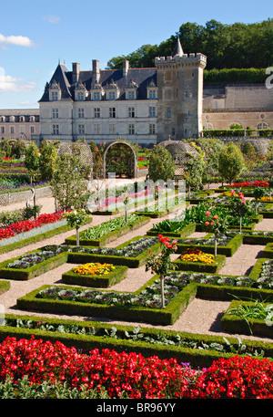 Gärten des Chateau de Villandry, Indre et Loire, Frankreich - Stockfoto