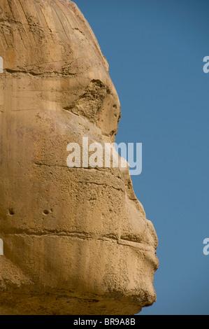 Seitenansicht der Sphinx an den Pyramiden von Gizeh in Ägypten - Stockfoto