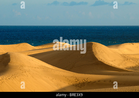 Dünen von Maspalomas, Gran Canaria, Kanarische Inseln, Spanien - Stockfoto
