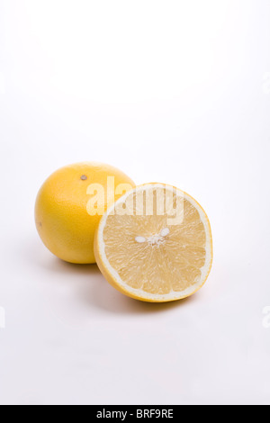 Whitemarsh Grapefruit, close-up - Stockfoto