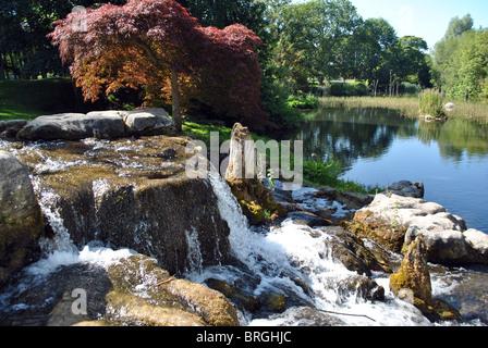 malerisches Bild Farben des Herbstes - Stockfoto