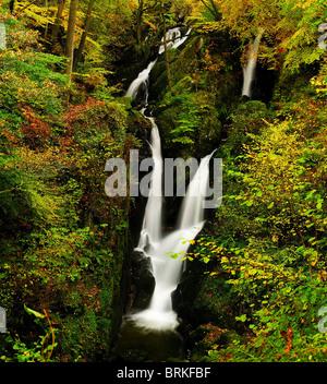 Herbst am Stockghyll Kraft im englischen Lake District - Stockfoto