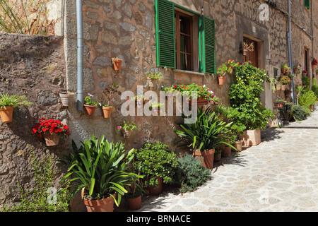 Spanien, Mallorca, Valdemossa, Gasse, Blumen in Blumentöpfen von gebrannten claies - Stockfoto