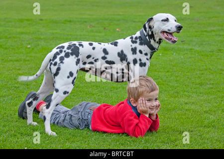 Porträt eines kleinen Jungen liegen unter seinen Dalmatiner - Stockfoto