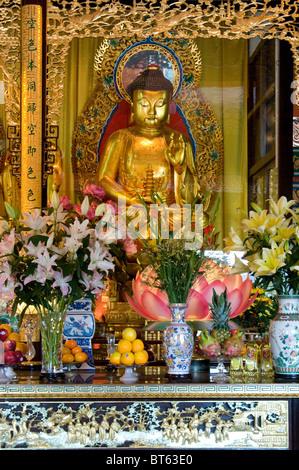 Tian Tan Tempel Hongkong Keramik Tongefäße glasierte gold golden Buddha Blumen - Stockfoto
