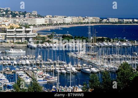 Cannes, Blick auf die Stadt mit Marina, Côte d ' Azur, Var, Südfrankreich, Frankreich, Europa - Stockfoto