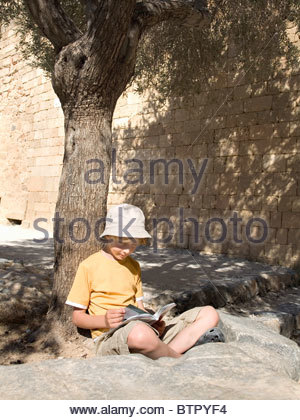 Junge liest Buch unter einem Baum - Stockfoto