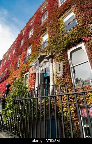 Herbstfarben im Georgian Dublin - Stockfoto