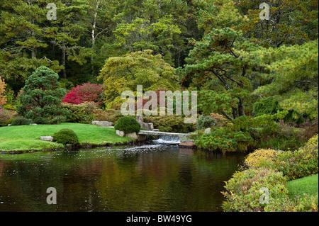 Asticou Azalea Garden, Öffentlichkeit, Northeast Harbor, Maine, USA - Stockfoto