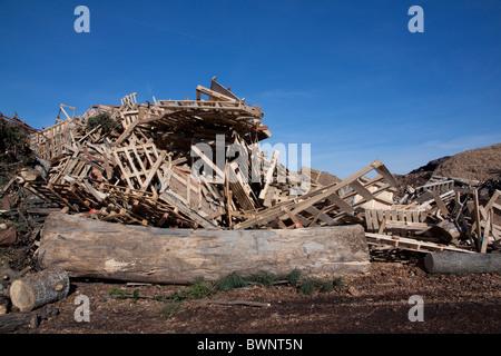 Verschiedene rohe Holz-Produkte warten für die Verarbeitung von Recycling-Anlage Michigan USA - Stockfoto