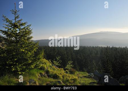 Brocken Bergblick vom Achtermann Gipfel, Nationalpark Harz, Niedersachsen, Deutschland - Stockfoto