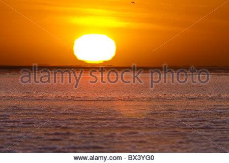 Die Sonne geht über die Eisfläche des Beaufort-See in eine Farbenpracht, auf der Küste des ANWR - Stockfoto