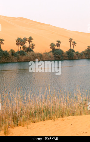 See, Erg Ubari, Sahara Wüste, Fezzan, Libyen, Nordafrika, Afrika - Stockfoto