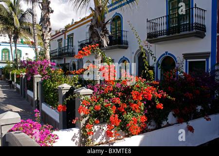 BUNTEN traditionellen kanarischen Häuser in PUERTO de MOGAN auf der Kanarischen Insel GRAN CANARIA. EUROPA. - Stockfoto