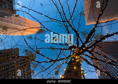 Wolkenkratzer des Rockefeller Centers, blickte zu Baum mit weißen Weihnachtslichter, Twilight, 6th Avenue, Manhattan - Stockfoto