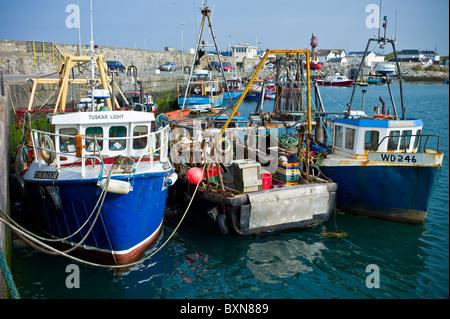 Traditionelle gefärbt hell Angelboote/Fischerboote und Trawler im County Wexford, Südirland - Stockfoto