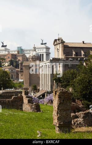Blick auf den Tempel des Antoninus und Faustina am Palatin, Rom, Italien - Stockfoto