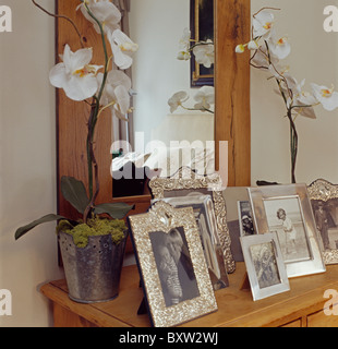 Weiße Orchideen im Topf auf Marmor Kaminsims im Stadthaus ...