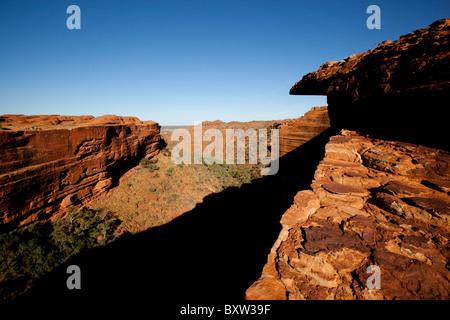 Australien Northern Territory Watarrka National Park Aussichtspunkt entlang der Felskante des Kings Canyon Eukalyptus - Stockfoto