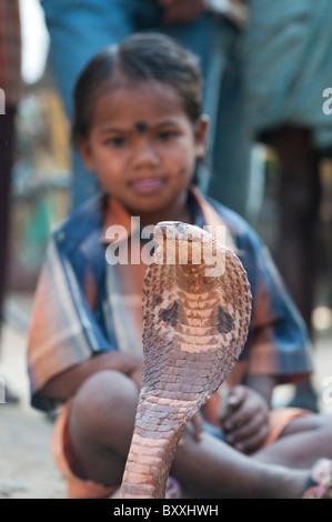 Schlechte untere Kaste indische Mädchen betteln mit brillenbär Cobra auf einer India Street. Andhra Pradesh, Indien - Stockfoto