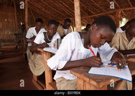 Drei Mädchen Studenten studieren in einem strohgedeckten Dach Schulzimmer in ländlichen Regionen Afrikas - Stockfoto
