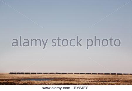 Ein Zug rollt über die kanadische Prärie im Süden Albertas. - Stockfoto