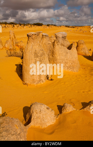 Salz und Pfeffer Shaker, Zinnen, Nambung National Park, Cervantes, Westaustralien - Stockfoto