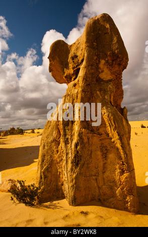 Die Pinnacles, Nambung National Park, Cervantes, Westaustralien - Stockfoto