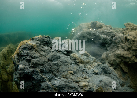 Taucher in Kleifarvatn, Vulkanismus, Island - Stockfoto