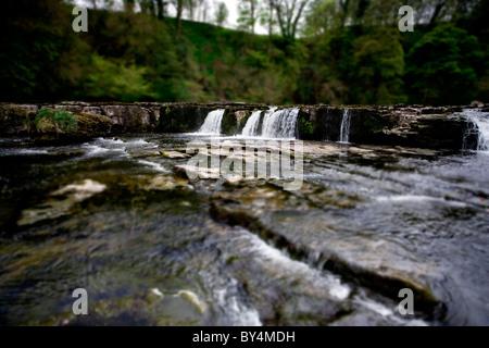 (Tilt-Shift-Effekt) Upper Aysgarth Falls, North Yorkshire Dales, England - Stockfoto