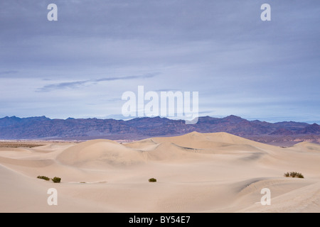 Abenddämmerung an den Mesquite flachen Dünen mit den Amargosa-Bergen in Death Valley Nationalpark, Mojave-Wüste, - Stockfoto