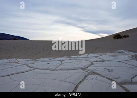 Getrocknete Schwundrissen in der alten Gewässergrund von den Mesquite flache Sanddünen im Death Valley Nationalpark, - Stockfoto
