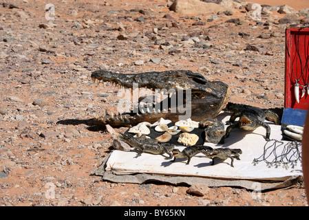 Krokodil Souvenirs, Nasser-See, Nubien, Oberägypten, Afrika. - Stockfoto