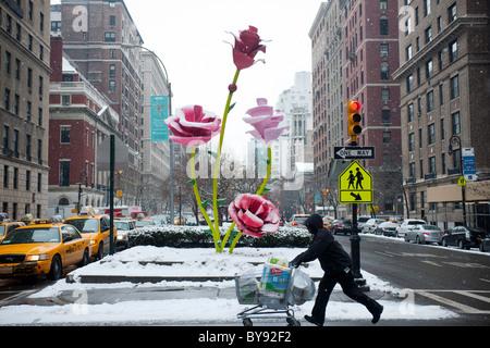 """""""Rosen"""" des Künstlers Will Ryman gilt auf einem verschneiten Dienstag, 25. Januar 2011 auf die mediane der Park - Stockfoto"""