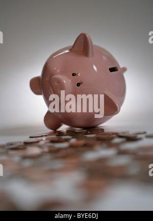 Ein Sparschwein, umgeben von Münzen. - Stockfoto