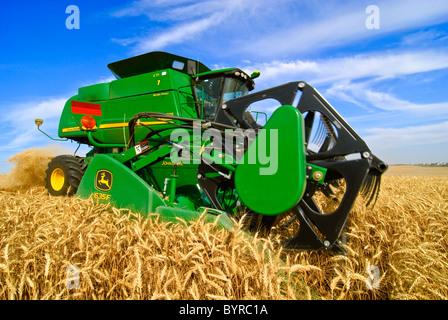 Landwirtschaft - Nahaufnahme von einem John Deere Mähdrescher beim Ernten von Weizen in der Palouse Region / in - Stockfoto
