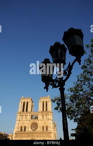 Notre Dame de Paris im späten Nachmittag Licht - Stockfoto