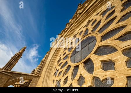 Detial Rosette an der Fassade von Santa Maria De La Sede Kathedrale, Sevilla, Spanien - Stockfoto
