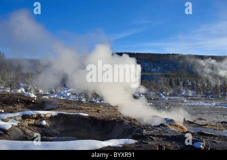 Dampf steigt aus heißen Quellen. Norris Geyser Basin, Yellowstone-Nationalpark, Wyoming, USA. - Stockfoto