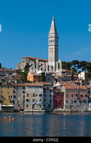 Altstadt mit Kirche Sv. Eufemia, Rovinj, Istrien, Kroatien, Europa - Stockfoto