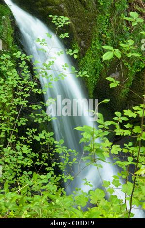 Wasserfall. Teil auf Lager ghyll Kraft, Ambleside, Cumbria, Großbritannien. Der Lake District.. - Stockfoto
