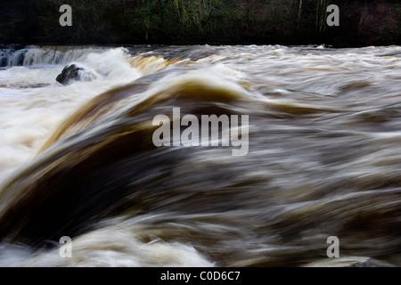 Aysgarth Falls, Wensleydale, Yorkshire Dales - Stockfoto