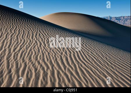 Mesquite flache Sanddünen, Stovepipe Wells, Death Valley Nationalpark, Kalifornien - Stockfoto