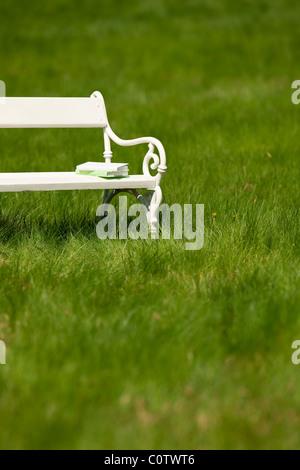 Frühling und Sommer - weiß für Liebespaare auf Wiese an sonnigen Tag - Stockfoto
