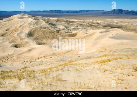 Kelso Dünen in der Mojave-Wüste, California. - Stockfoto