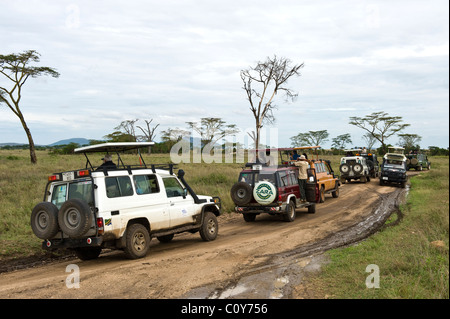 Stau verursacht durch Besucher, die gerade eines Leoparden in Seronera Serengeti Tansania - Stockfoto
