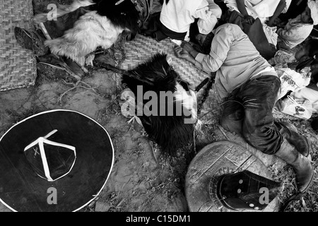 Indianer, mit ihren Karton Hüte aus, auf dem Boden schlafen während der Inti Raymi (San Juan) Festlichkeiten in - Stockfoto