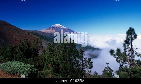 Blick auf den Teide, Teneriffa, Kanarische Inseln, Spanien, Europa - Stockfoto