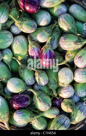 Fresh Health Food Emporium