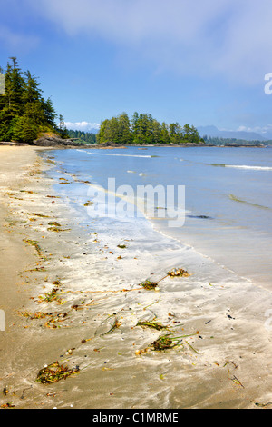 Long Beach im Pacific Rim National Park, Vancouver Island, Kanada - Stockfoto
